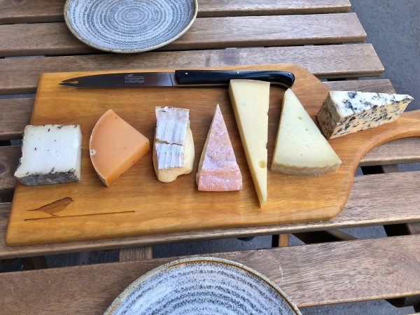 Basic rules of cheese tasting